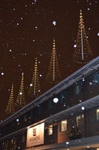 Flagpole Christmas tree with Light