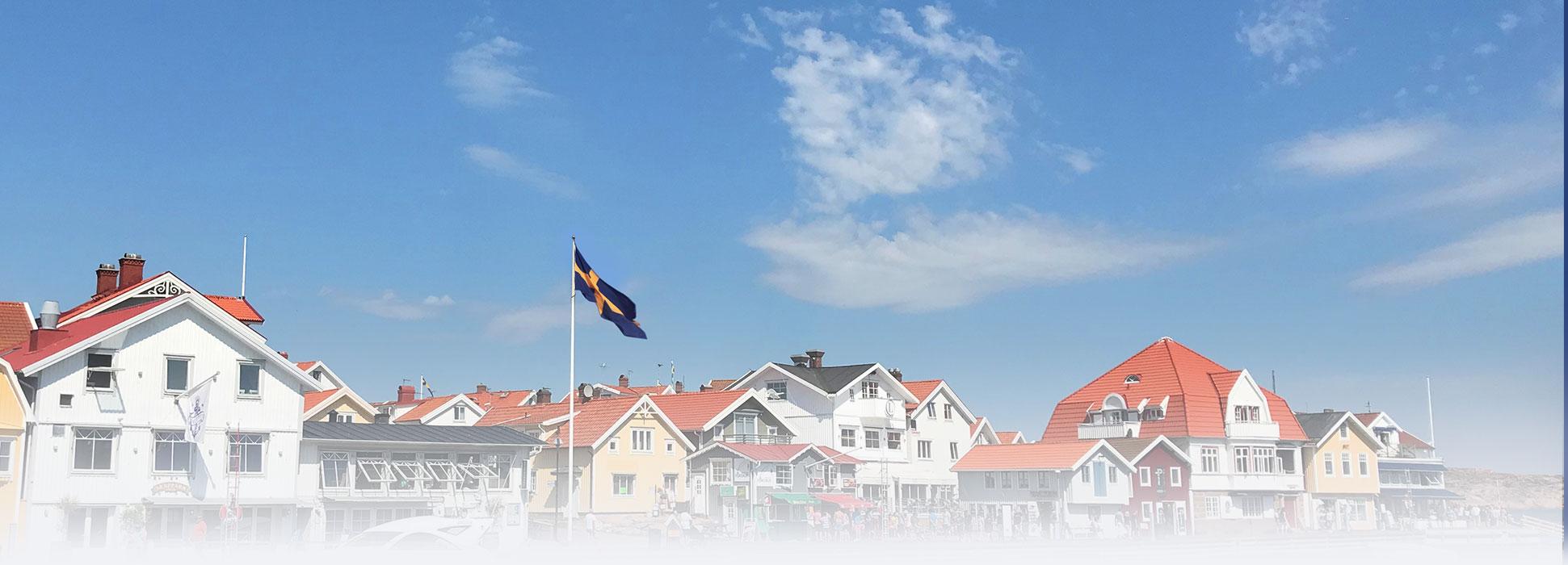 smoogen-flagga